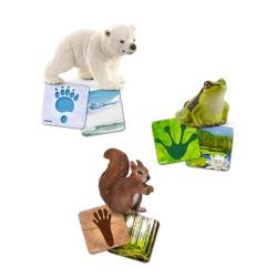 Schleich® Lernkarten Wild Life